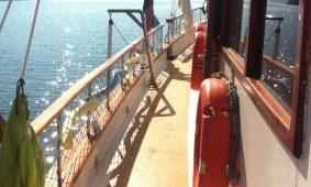 havfrue-tyrkiet